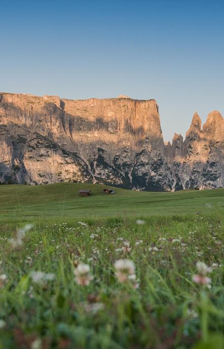 Vacanze Sull Alpe Di Siusi Vacanze In Alto Adige
