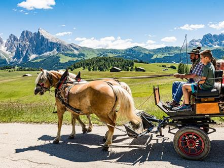 Romantic carriage rides on the Seiser Alm in the heart of the Dolomites