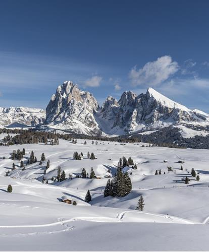 Winter paradise Seiser Alm in the Dolomites