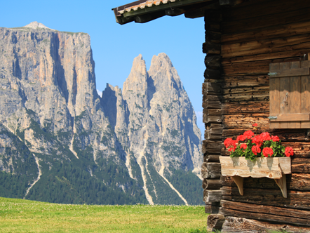 Tips, specials, offers, news, important facts and more from the Seiser Alm in South Tyrol