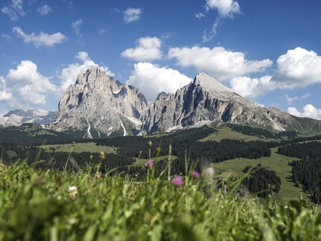 Schlern-Rosengarten Nature Park in the UNESCO World Heritage in the Dolomites